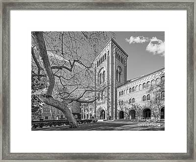 University Of Southern California Administration Building Framed Print by University Icons