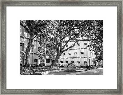 University Of Southern California Ahmanson Framed Print by University Icons