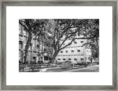 University Of Southern California Ahmanson Framed Print