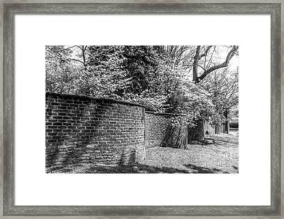 University Of Virginia Serpentine Garden Wall Framed Print by University Icons