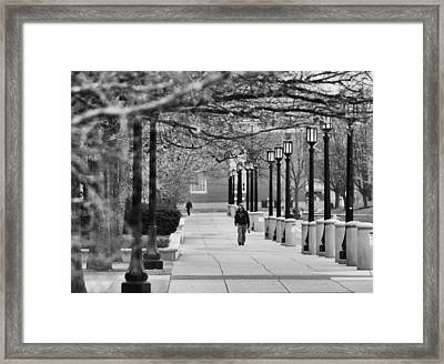 University Walk Framed Print by Coby Cooper