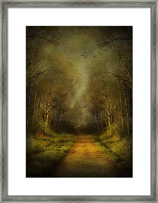 Unknown Footpath Framed Print