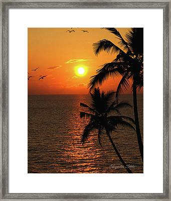 Unknown Paradise Framed Print