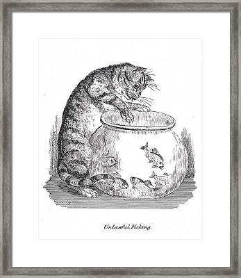 Unlawful Fishing Cat Paws At Goldfish Framed Print