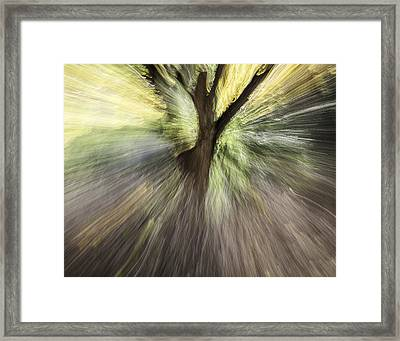 Unleash The Light Framed Print