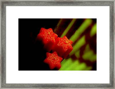 Unlighted Candles Framed Print