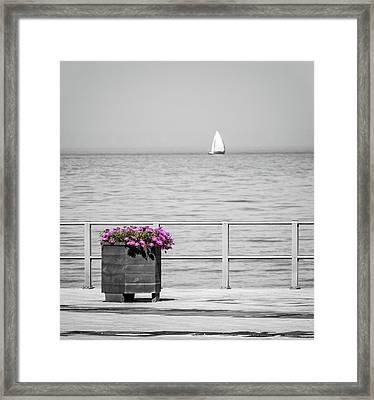 Unnoticed Framed Print by Wim Lanclus