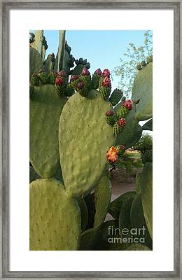 Unprickly Prickly Pear Vertical Framed Print