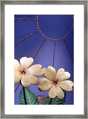 Unreal Framed Print by Jez C Self