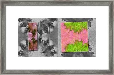 Unstultifying Undraped Flower  Id 16164-094301-34801 Framed Print