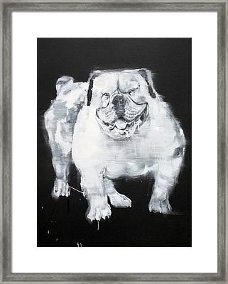 Unstumbling Force #bulldog Framed Print by Fabrizio Cassetta