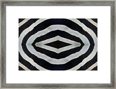 Framed Print featuring the photograph Untamed by Tony Beck
