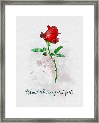 Until The Last Petal Falls Framed Print