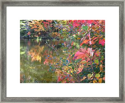 Until We See The Light And Beauty Framed Print by Sybil Staples