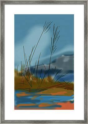 untitled 1 Nature Framed Print by Denny Casto