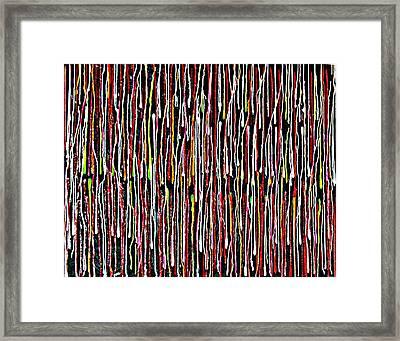 Untitled 1 Framed Print by Paul Freidin