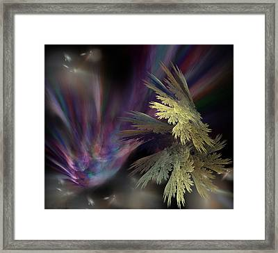 Untitled 12-05-09 Framed Print