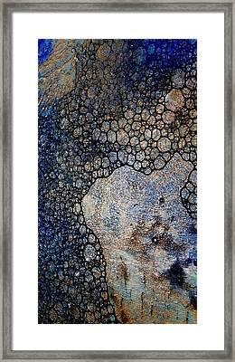 Untitled 13 Framed Print