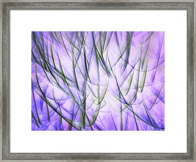 Untitled #8080224, From The Soul Searching Series Framed Print
