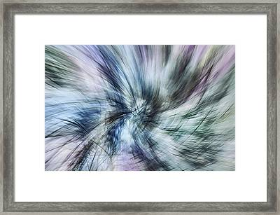 Untitled #8380, From The Soul Searching Series Framed Print