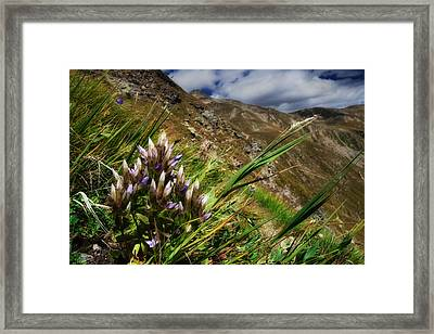 Untitled 94 Framed Print