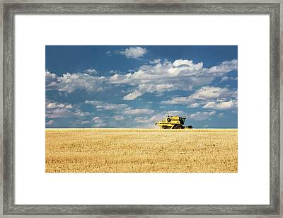 Untitled Combine Framed Print by Todd Klassy