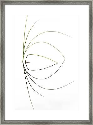 Untitled Framed Print by Dirk Heckmann
