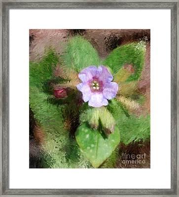 Untitled Floral -1 Framed Print by David Lane