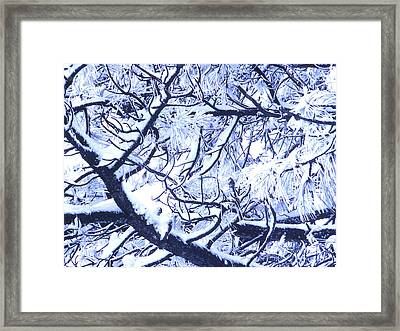 Untitled January 1964 Framed Print by Alexander Weygers