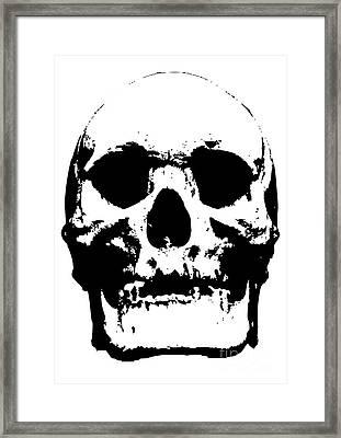 Untitled No.33 Framed Print by Caio Caldas