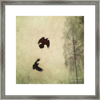 Untitled Framed Print by Priska Wettstein