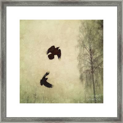Untitled Framed Print by Priska Wettstein