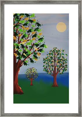 Untitled Tree Framed Print by Denny Casto