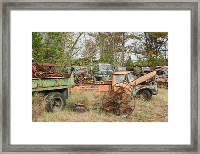 Unwanted Framed Print by Timothy Hedges