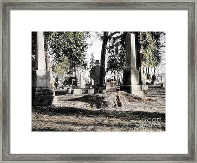 Unwilling To Go Framed Print