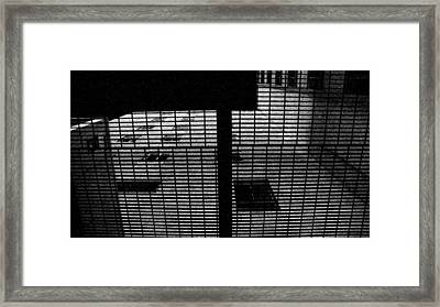 Up Above From Down Below Framed Print by Darin Baker