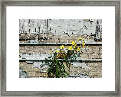 Framed Print featuring the digital art Up Against The Wall by Ellen Barron O'Reilly