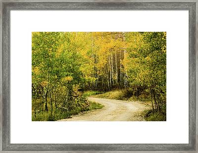 Up Around The Bend Framed Print by TL Mair