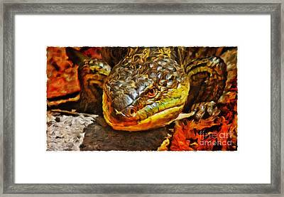 Up Close And Personal Framed Print by Blair Stuart