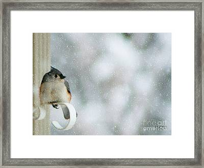 Up Front Framed Print