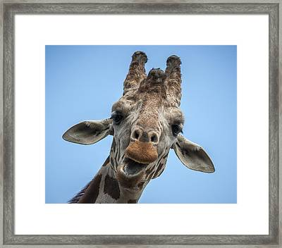 Up Here Framed Print