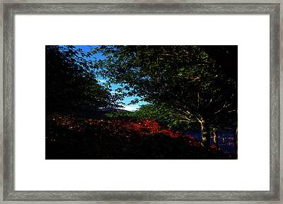 Up Hill Framed Print by Napo Bonaparte