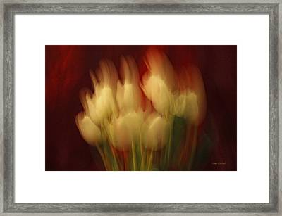Up In Flames Framed Print by Donna Blackhall
