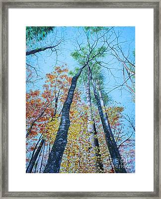 Framed Print featuring the painting Up Into The Trees by Mike Ivey