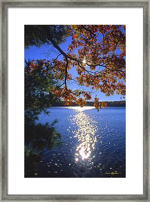 Up North Morning Framed Print