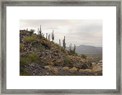 Up On Black Mountain Framed Print by Gordon Beck