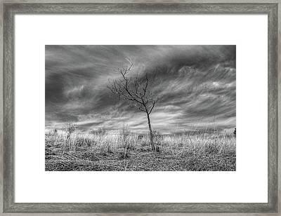 Up On Kittatinny Ridge Framed Print