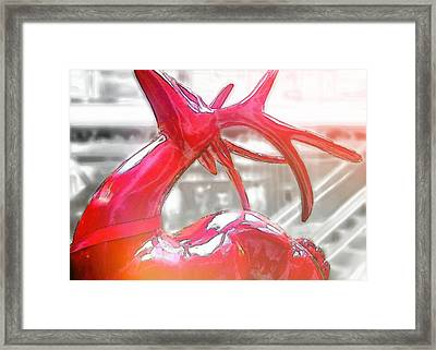 Up On The Rooftop Framed Print by JAMART Photography