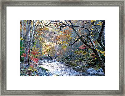 Up The Mountain We Go Framed Print by Brittany H