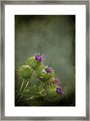 Up To The Point Framed Print